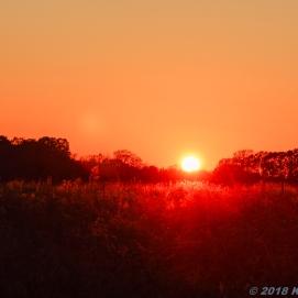 11 10 18 AR sunset (4 of 5)
