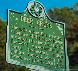 11 18 18 Deer Creek Leland MS #2 (1 of 1)