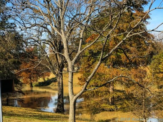 11 18 18 Deer Creek Leland MS #2 (2 of 3)
