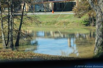 11 18 18 Deer Creek Leland MS #3 (4 of 6)
