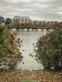 11 23 18 Coolidge Park, The Peace Grove & Walnut Street Bridge Chattanooga TN (25 of 33)