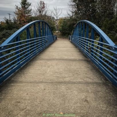 11 23 18 River Gallery Sculpture Garden Chattanooga TN (57 of 57)