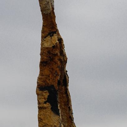 11 24 18 Sculpture Fields at Montague Park Chattanoogo TN (1 of 27)