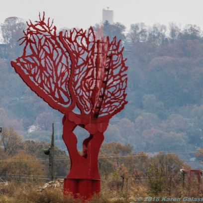 11 24 18 Sculpture Fields at Montague Park Chattanoogo TN (5 of 27)