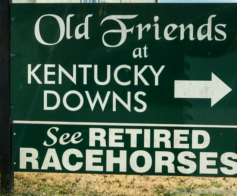 11 25 18 Old Friend's of Kentucky Downs Franklin KY - Sally, tour guide (43 of 43)