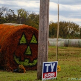 11 3 18 Haybales decorated for Halloween Stillwater OK (3 of 4)