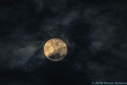 12 22 18 Full Cold Moon 2 (10 of 10)