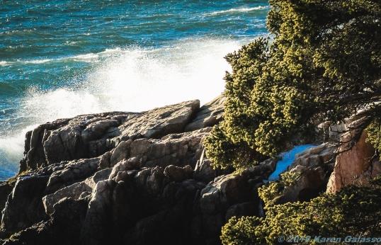 2 9 19 Bass Harbor Head Light Acadia NP Mt Desert Island ME (7 of 11)