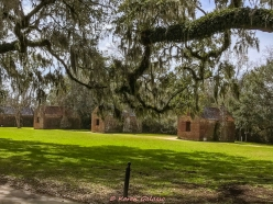 3 3 20 Avenue of Oaks & Boone Hall Plantation Charleston SC (13 of 36)