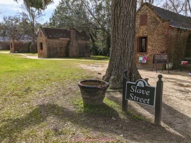 3 3 20 Avenue of Oaks & Boone Hall Plantation Charleston SC (21 of 36)