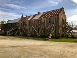 3 3 20 Avenue of Oaks & Boone Hall Plantation Charleston SC (3 of 36)