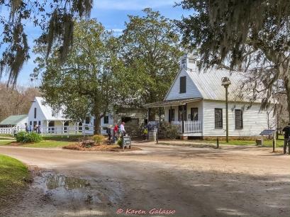 3 3 20 Avenue of Oaks & Boone Hall Plantation Charleston SC (34 of 36)