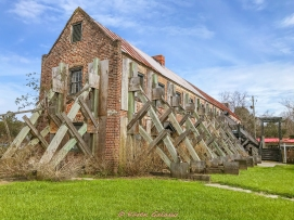 3 3 20 Avenue of Oaks & Boone Hall Plantation Charleston SC (4 of 36)