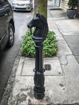 3 3 20 Walking around Charleston SC (5 of 9)