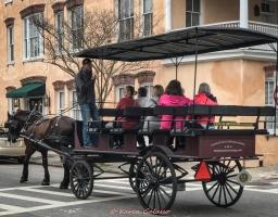 3 3 20 Walking around Charleston SC (6 of 9)