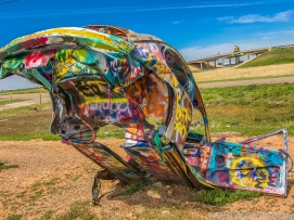 4 28 19 Slug Bug Ranch Panhandle TX (8 of 19)
