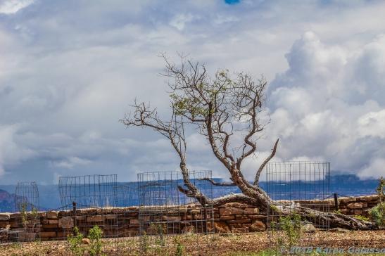 5 11 19 Hopi House & view South Rim Grand Canyon AZ (11 of 33)
