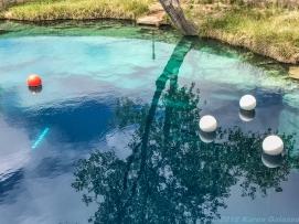 5 2 19 The Blue Hole Santa Rosa NM (13 of 24)