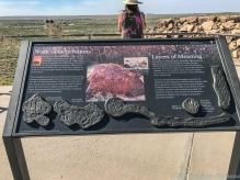 5 3 19 Petrified Forest National Park-Painted Desert #2 AZ (2 of 4)