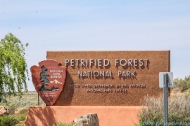 5 3 19 Petrified National Forest-Painted Desert AZ (1 of 40)