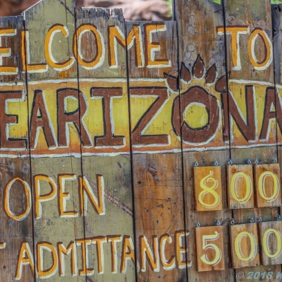 5 4 19 Bearizona Williams AZ (1 of 48)