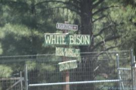 5 4 19 Bearizona Williams AZ (18 of 48)