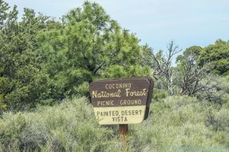 5 6 19 Painted Desert Vista near Flagstaff AZ (1 of 9)