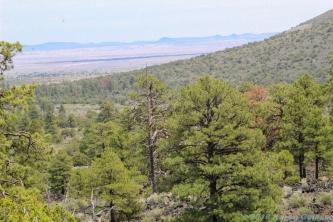 5 6 19 Painted Desert Vista near Flagstaff AZ (6 of 9)