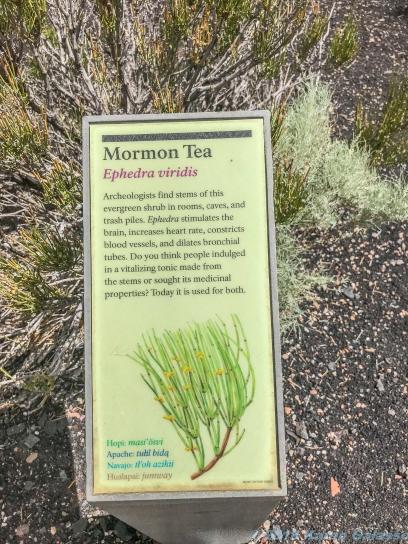 5 6 19 Wupatki National Monument Coconino County, Arizona (9 of 32)