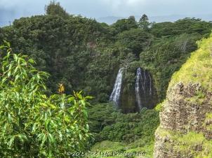 11 14 17 Opaekaa Falls (1 of 10)