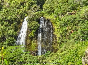 11 14 17 Opaekaa Falls (2 of 10)