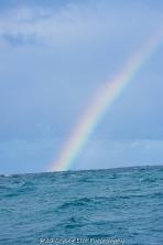 11 15 17 Rainbows 3 (2 of 2)
