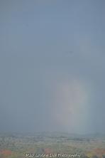 11 15 17 Rainbows 5 (1 of 1)