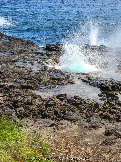 11 16 17 Spouting Horn blowhold Poipu HI (1 of 1)