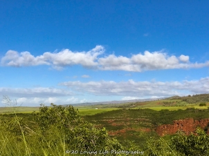 11 16 17 Waimea Canyon Waimea HI (4 of 12)