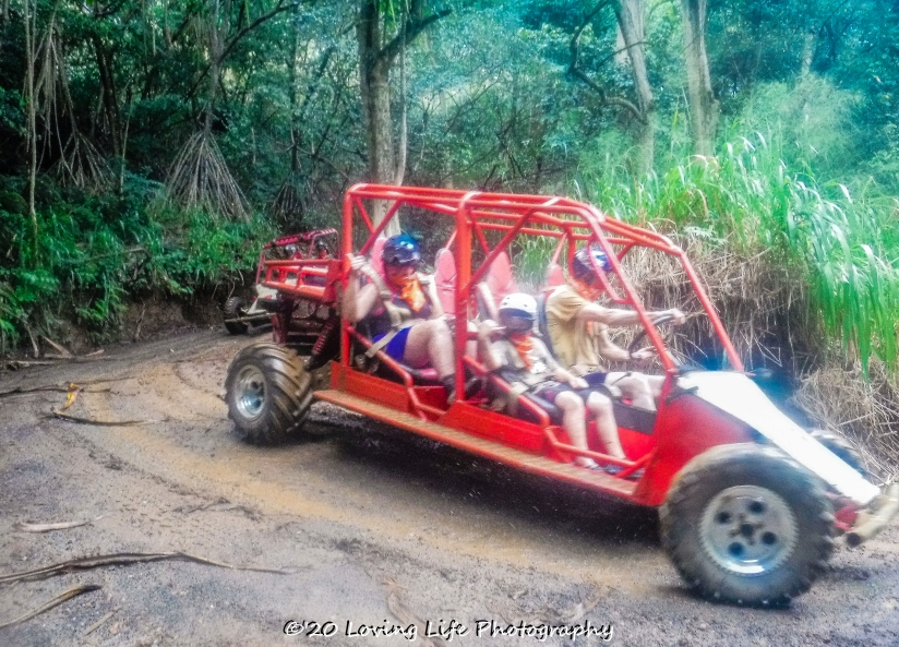 11 18 17 Most images taken by Kauai ATV tour guides (25 of 74)
