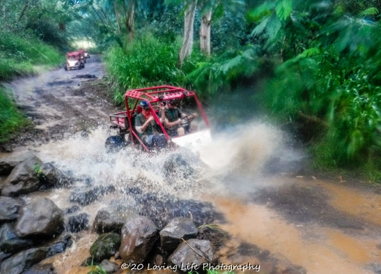 11 18 17 Most images taken by Kauai ATV tour guides (44 of 74)