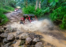 11 18 17 Most images taken by Kauai ATV tour guides (46 of 74)