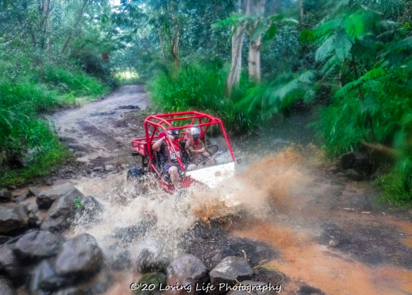 11 18 17 Most images taken by Kauai ATV tour guides (49 of 74)