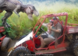 11 18 17 Most images taken by Kauai ATV tour guides (58 of 74)