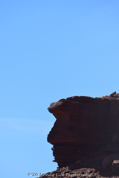 3 26 17 Inside The Arches & Canyonland NP #2 (163 of 222)