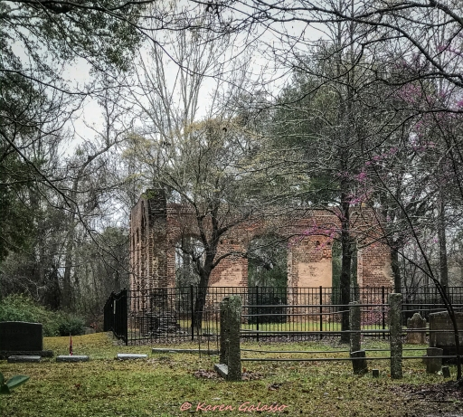 3 5 20 Biggins Church Ruin Moncks Corner SC (1 of 5)