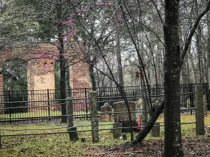 3 5 20 Biggins Church Ruin Moncks Corner SC (3 of 5)