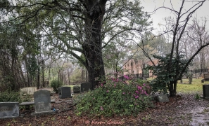 3 5 20 Biggins Church Ruin Moncks Corner SC (5 of 5)