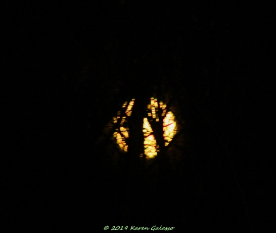 3 9 20 Super Moon (3 of 8)