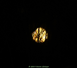 3 9 20 Super Moon (4 of 8)