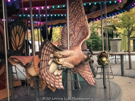 9 10 17 The Carousel on the Rose Kennedy Greenway (14 of 25)