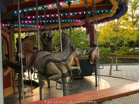 9 10 17 The Carousel on the Rose Kennedy Greenway (8 of 25)