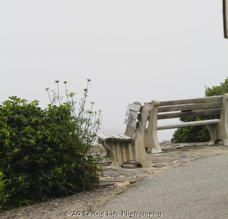 7 10 20 Lobster Point Lighthouse Marginal Way Ogunquit ME (9 of 12)