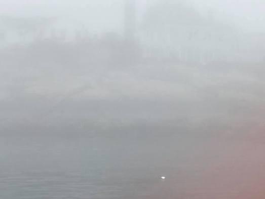 7 10 20 Silverlining morning sail 6